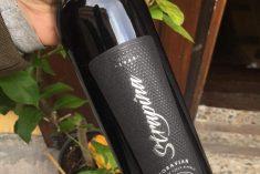 Rodiné vinařství Strapina